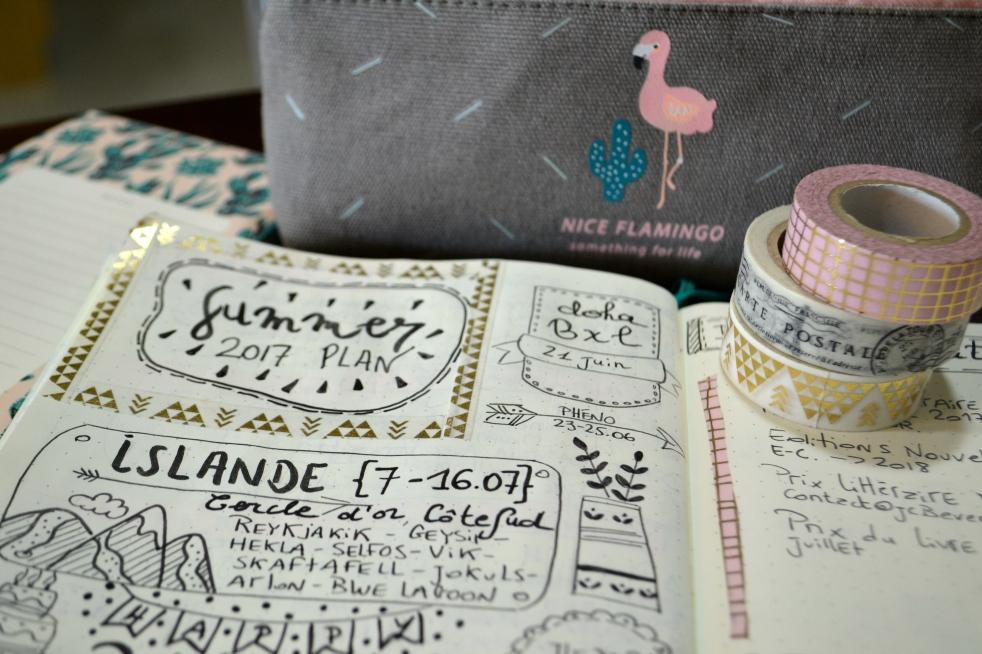 bullet journal francais sweet flamant rose. Black Bedroom Furniture Sets. Home Design Ideas